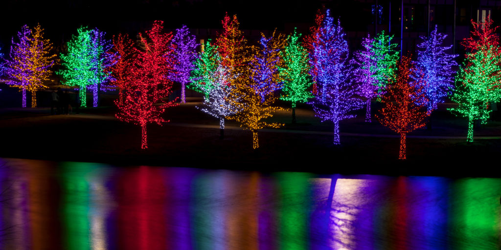 christmas-lights-river-trees